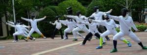 Fencing 2014 Flashmob 121