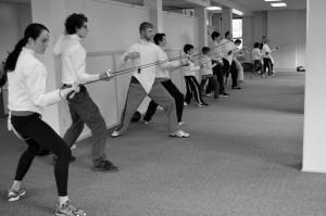 Fencing March 2015 027