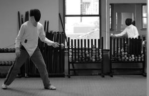 Fencing March 2015 132